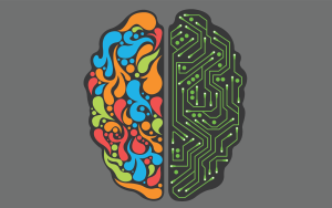 divided brain